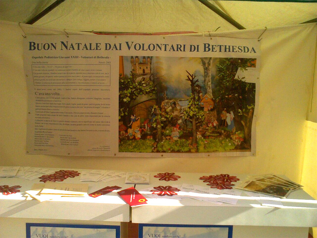 Volontari di Bethesda (2)